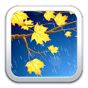 Gold Maple Leaf Live Wallpaper