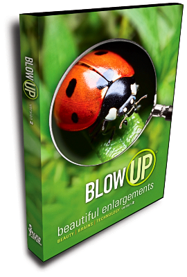 Blow Up 2 Box Shot
