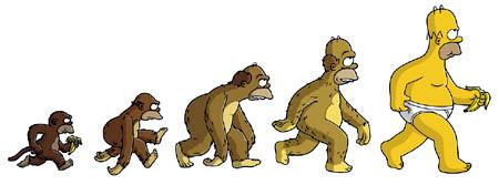 Radīšana pret evolūciju