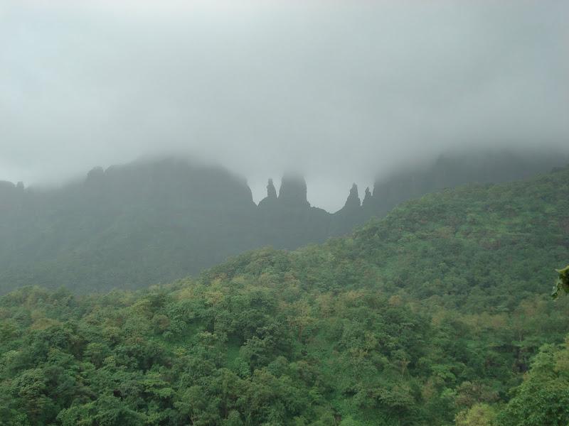 mist in marathi