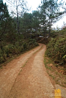 A Part of the Paved Path to Sagada's Calvary Hills