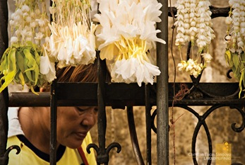 A Flower Vendor at the Pasig's Cathedral