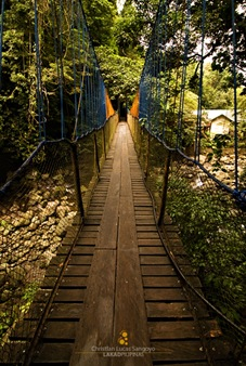 A Slippery Hanging Bridge Perfect for Pictorials at Majayjay's Taytay Falls