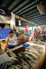 Fishes and More Fishes at Coron Market