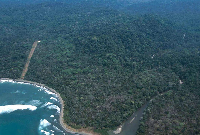 Corcovado National Park - The Most Biologically Intense Place on Earth