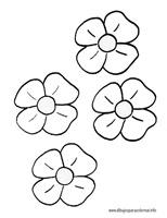 flores_45