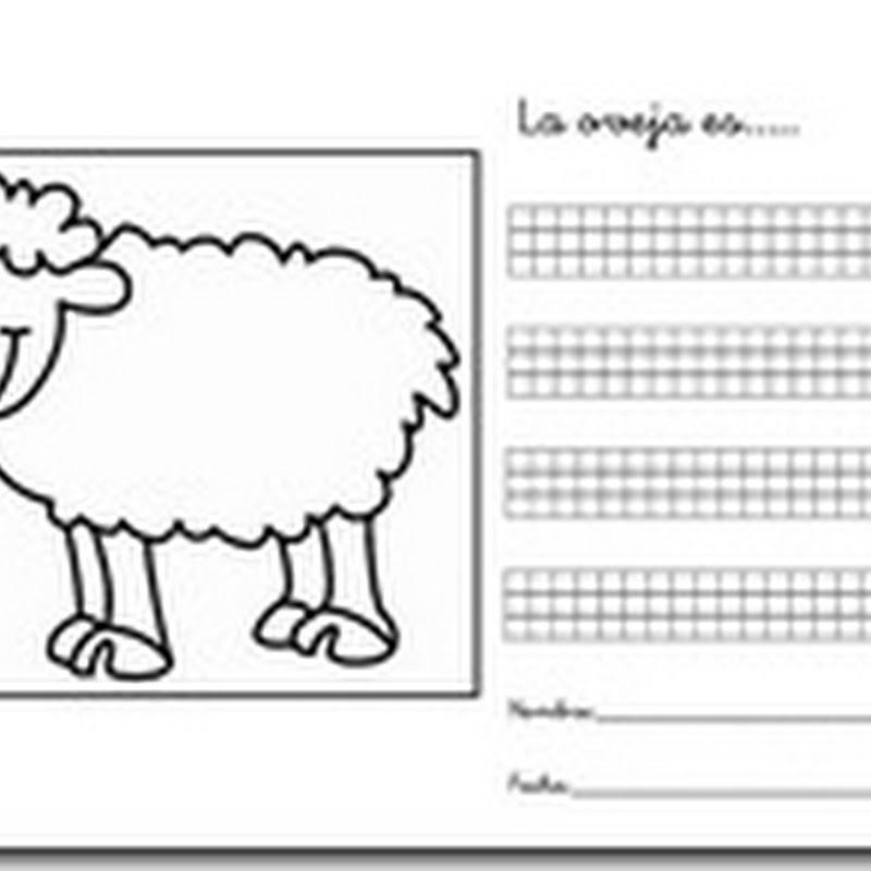 Fichas para primaria: Describir animales