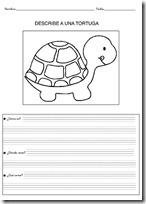 animales primaria - blogcolorear-com (25)