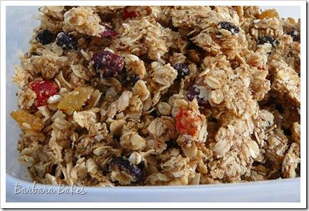 Tropical Granola Recipe | Barbara Bakes