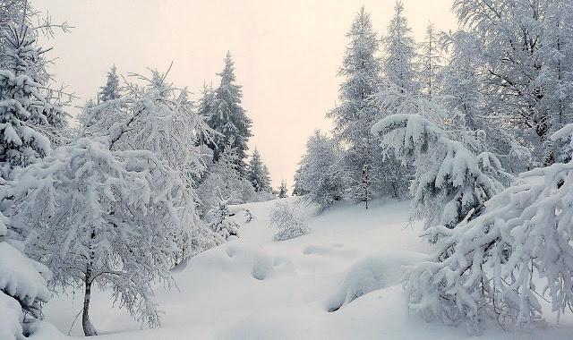wir stapfen durch den schnee text