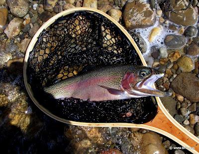 Billy Burk fishing a reservoir in Colorado