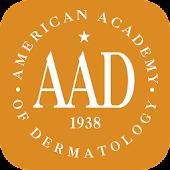 AAD Summer Academy 2014