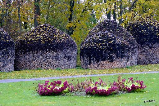 Хутынский Спасо-Преображенский монастырь Морозы сестрам не страшны фото yuri1812