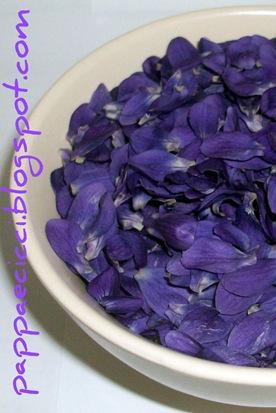 viole1