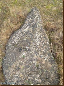 Menhir 1 - ruta dolmenes de Artajona