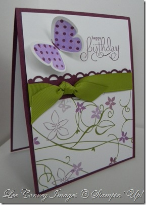 flight of the butterfly and Sharon's swap 004