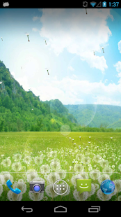 Dandelion Field LWP - screenshot thumbnail