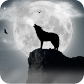 Wolf and moon Live Wallpaper