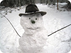 What a happy snowman!