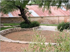 roma bluff courtyard