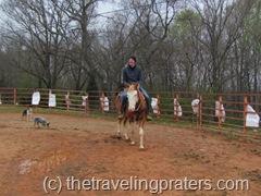 horseback riding in alabama in the pen