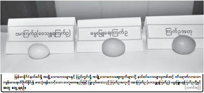 Fake egg in Myanmar