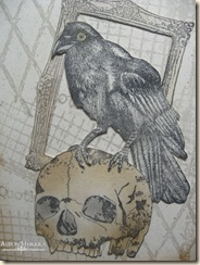 Raven-Collage-2
