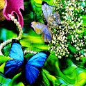 3D Butterfly 12 logo