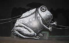 Photograph of a bullfrog in Phlegm's piece.