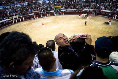 Asher's view of a bullfight
