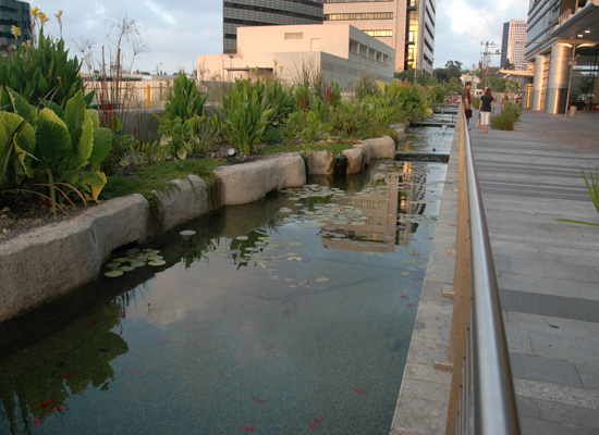 Ayala Water And Ecology