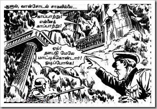 Rani Comics Issue No 26 Dated 15th July 1985 Ranuva Ragasiyam page 13 Panel 1