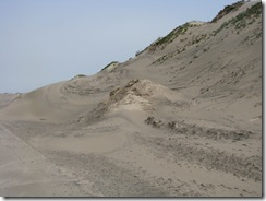 5073 Sand Dunes South Padre Island Texas
