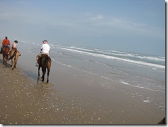 5290 Horseback Riding on the Beach South Padre Island Texas