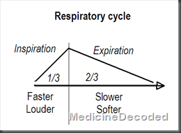 respiraory cycle