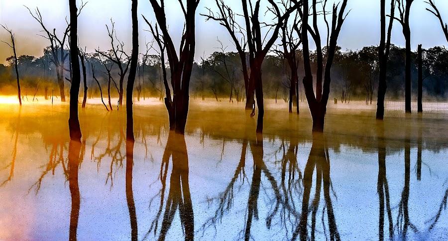 by Barry Ooi - Landscapes Sunsets & Sunrises ( sunrise )