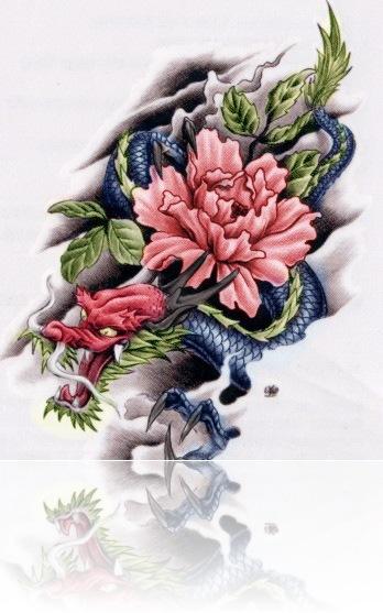 Dragon_Rose_by_xX____Xx