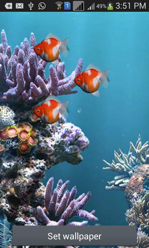 aquarium live wallpaper fish android apps on google play