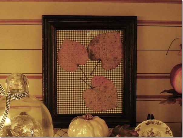 framed autumn leaves