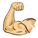 Best Bicep Workouts Revealed logo
