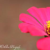 Kerala Biodiversity
