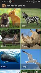 Wildlife Sounds - screenshot thumbnail
