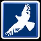 World Birds icon
