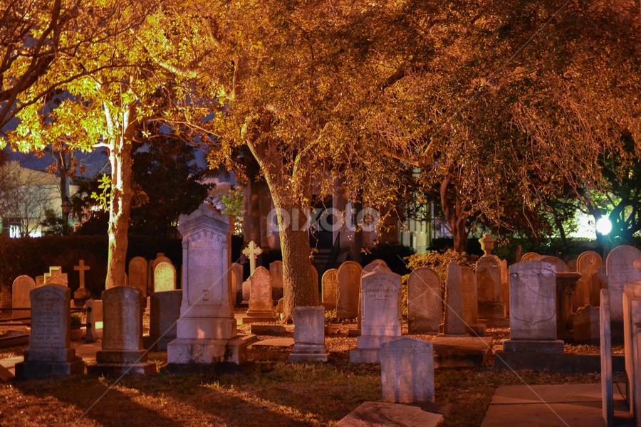 Silent Dead by Jonathan Jackson - City,  Street & Park  Cemeteries ( tomb, cemetery, historic, graveyard, nightscape )