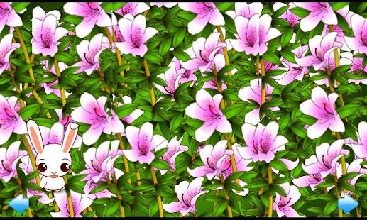 花朵的秘密 繁體中文版