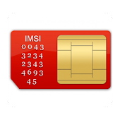 Your Sim Information