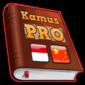 Kamus Indonesia China Pro