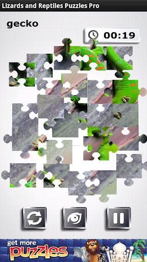 蜥蜴爬行動物 - 免費益智