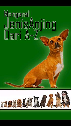 Mengenal Jenis Anjing dari A-Z
