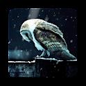 Sad Owl HD Livewallpaper icon